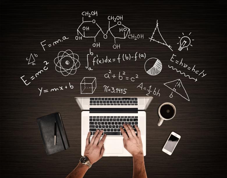 Работа программистом или дизайнером