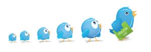 Что позволяет Твиттер